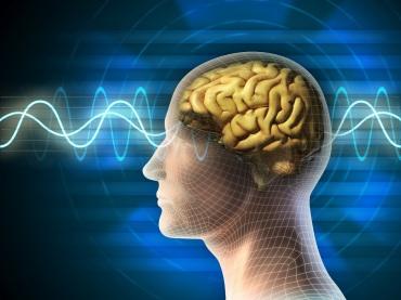 insan-beyni-nece-isleyir-senedli-film