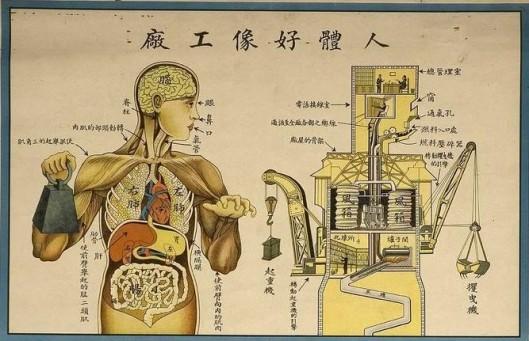 Body as a Machine