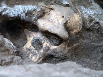 skull 1_skakos