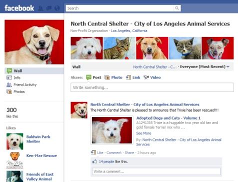 north-central-facebook