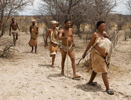 Naro bushman (San) walking, Central Kalahari, Botswana