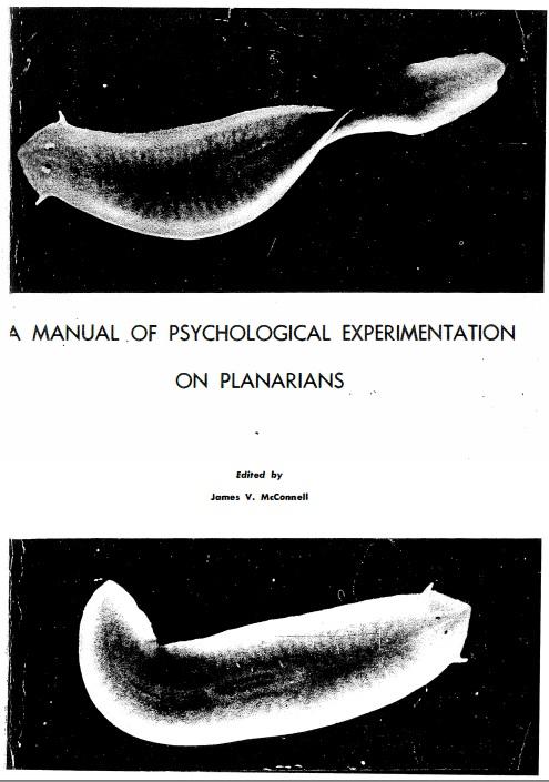 planarian worms skakos